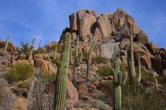 Woestijn toneel met grote kei Stock Afbeelding