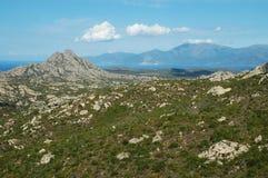Woestijn van Agriates, Corsica royalty-vrije stock fotografie