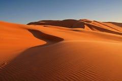 Woestijn van eenzaamheid Stock Afbeeldingen
