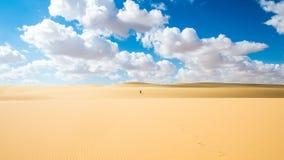 Woestijn van Egypte royalty-vrije stock afbeeldingen