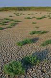 Woestijn zoals landschap Stock Foto's
