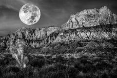 Woestijnbergen op een nacht van de volle maan Stock Afbeelding