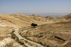Woestijncanion van Wadi Kelt Stock Afbeeldingen