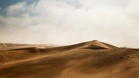 Woestijnduinen in Namib-woestijn, Namibië, Afrika royalty-vrije stock foto