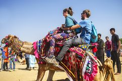 Woestijnfestival, 2018, Jaisalmer, Rajasthan, India Stock Afbeeldingen