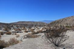 Woestijngebied dichtbij Duizend Domein van de Palmenoase in Coachella Stock Foto's