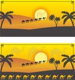 Woestijnkamelen Royalty-vrije Stock Fotografie