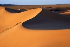 Woestijnlandschap, de woestijn van Gobi, Mongolië Stock Afbeelding