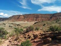 Woestijnlandschap met berg, zand, en borstel stock foto's