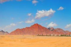 Woestijnlandschap met bergen en een kleine oase op een backgroun royalty-vrije stock fotografie