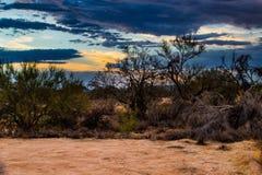 Woestijnlandschap onder de moesson stock afbeeldingen