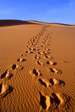Woestijnlandschap van de woestijn van Gobi met voetafdruk in het zand, Mongolië Royalty-vrije Stock Foto's