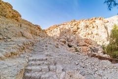 Woestijnlandschap van Ein Gedi Stock Foto