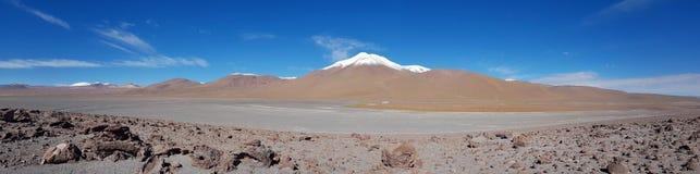 Woestijnlandschap van het Andesplateau van Bolivië met pieken van snow-capped vulkanen van de Andescordillera royalty-vrije stock afbeeldingen