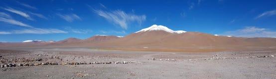Woestijnlandschap van het Andesplateau van Bolivië met pieken van snow-capped vulkanen van de Andescordillera royalty-vrije stock afbeelding