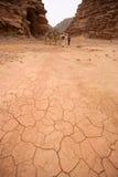 Woestijnlandschap - Wadi Rum, Jordanië Stock Afbeeldingen