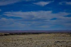 Woestijnmening stock foto's
