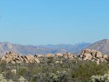 Woestijnscène Royalty-vrije Stock Afbeeldingen