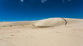 Woestijnspel Stock Afbeelding