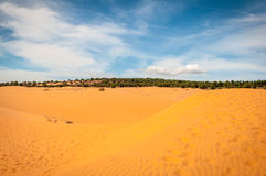 Woestijnstrand royalty-vrije stock afbeelding