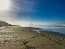 Woestijnstrand in westkust van Californië royalty-vrije stock fotografie