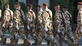 Woestijntroepen die bij een parade marcheren stock footage