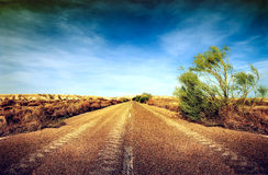 Woestijnweg royalty-vrije stock afbeeldingen
