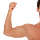 Wohler mit Muskeln männlicher Arm Stockfoto