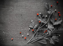 Wohlriechende frische Petersilie und Dill vereinbarten auf einem diagonalen dunklen Hintergrund stockbilder