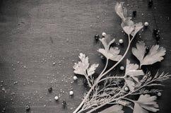 Wohlriechende frische Petersilie und Dill vereinbarten auf einem diagonalen dunklen Hintergrund lizenzfreie stockfotografie