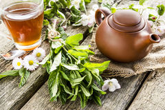 Wohlriechende Minze und Tee Stockfotos