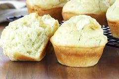 Wohlschmeckende Muffins Stockbild