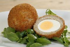 Wohlschmeckendes schottisches Ei Stockfotos