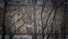 Wohngebäude durch Winterbäume lizenzfreie stockbilder