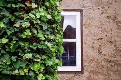Wohngebäude-Wand in Wismar, Deutschland Lizenzfreies Stockbild