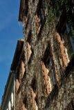 Wohnhaus in der Stadt von Heidelberg Lizenzfreies Stockbild