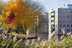 Wohnnachbarschaft mit Bäumen im Herbst lizenzfreie stockbilder