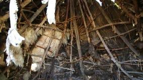 Wohnung des Stein- oder Bronzezeitalters, Innenansicht stock footage