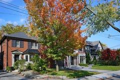 Wohnviertel mit reifen Bäumen stockbilder