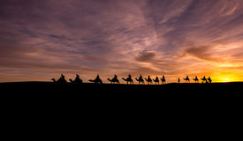 Wohnwagen in Sahara Desert Stockfotos