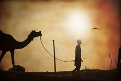 Wohnwagen von Kamelen bei Sonnenuntergang in der Sandwüste Lizenzfreies Stockbild