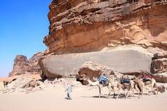Wohnwagen von Kamelen in Wadi Rum-W?ste, Jordanien stockfotografie