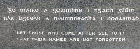 Wojenny pomnik Ballina Irlandia Obraz Royalty Free