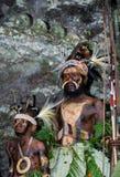Wojownicy Papuaski plemię Yafi w tradycyjnych ubraniach, ornamentach i kolorystyce, Nowa gwinei wyspa, Zdjęcia Royalty Free