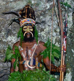 Wojownicy Papuaski plemię Yafi w tradycyjnych ubraniach, ornamentach i kolorystyce, Nowa gwinei wyspa, Zdjęcie Royalty Free