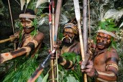 Wojownika plemię Yaffi w wojennej farbie z łękami i strzała w jamie Nowa gwinei wyspa Zdjęcie Stock