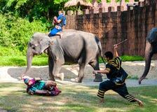 Wojownika ćwiczenie dla Tajlandzkiej tradycyjnej sztuki samoobrony demonstraci Fotografia Royalty Free