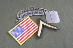 WOJSKO USA Intymna wybujała łata, jednostki specjalne zakładki, flaga łata i psia etykietka na oliwnej zieleni, mundurujemy Zdjęcie Royalty Free