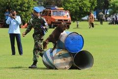 Wojskowego psi szkolenie Zdjęcia Royalty Free