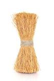 Wok Cleaning Brush royalty free stock photos